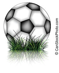 soccer ball and grass reflected