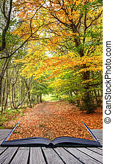Autumn Fall forest landscape magic book pages