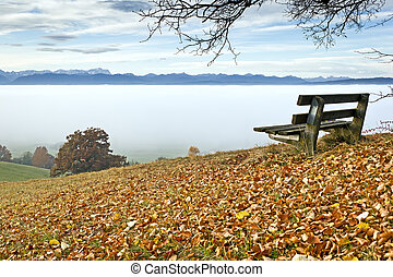 autumn scenery - An image of a nice autumn landscape
