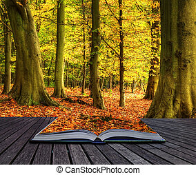 Autumn Fall forest landscape magic book pages - Autumn Fall...