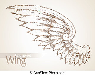Vector engraved ornate wing