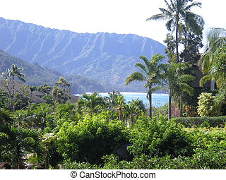 Looking out to Hanalei Bay and Bali - Shot looking through...