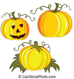 Vector pumpkin isolated on the white background