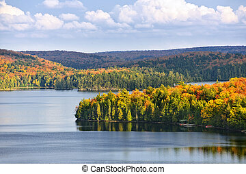 Fall forest and lake - Fall forest of colorful autumn trees...