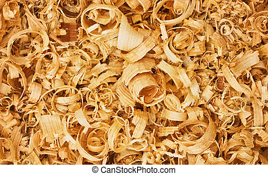 wood shavings - background of the golden curls of wood...