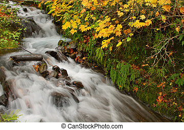 Wahkeena Falls at Columbia River Gorge in the Fall