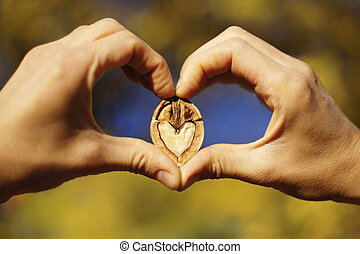 Adoration - Two hands making heart sign with a heart-shaped...