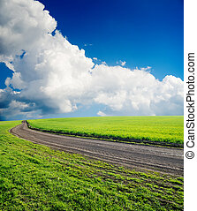 dirty road in green field under cloudy sky