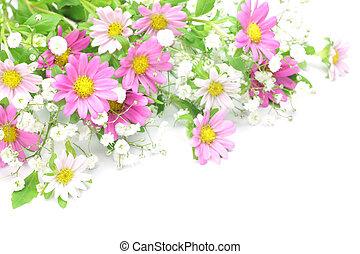 chrysanthemum and haze grass - I took a chrysanthemum and...