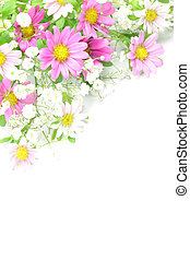 chrysanthemum and haze grass - I took a chrysanthemum and...