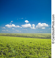 green field under deep blue sky with clouds