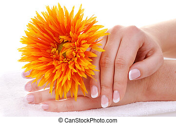Beautiful french manicure and flower - Female hands with...