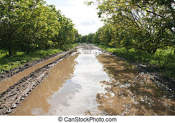rural road with big puddle