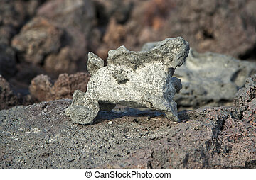 volcanic stones at the beach formation - volcanic stone...
