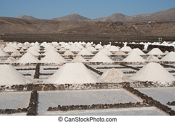 Salt piles on a saline exploration - Salz wird in den...