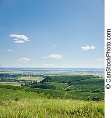 view to vineyards under blue sky with clouds