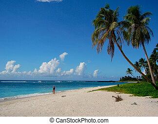 Samoa, spiaggia
