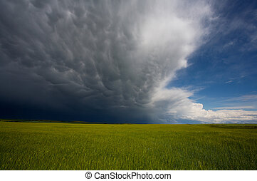Approaching Storm - Storm cloud coming over farm fields