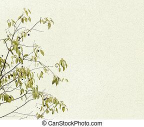 delicado, ramas, hojas, bayas