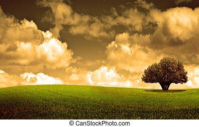 Arbol y tormenta - Escena primaveral con arbol