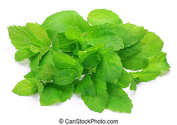 mint - I took a mint in a white background.