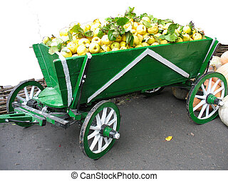 Old green wooden cart with quince fruits harvest