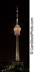 Biggest basket in the world on TV tower - Basket: 347 m in...