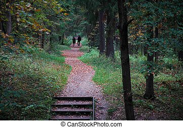 Couple walking on a path through the autumn park
