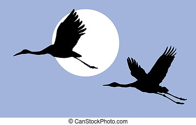 illustration of the cranes