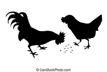 silueta, gallo, gallina