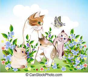happy ats family Cat and kittens on the meadow