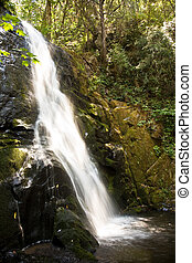 waterfall at the small river Cascade Creek - beautiful small...