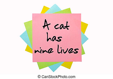 "Proverb ""A cat has nine lives"" written on bunch of sticky notes"
