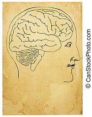 Old Style Head and Brain Illustration - An old style line...