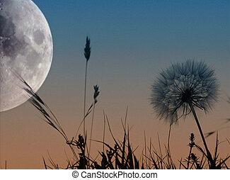 風景, 月亮