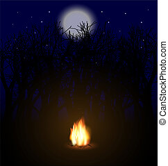 flame in the night - moonlit night, dark trees, bonfire the...