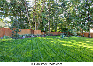 Large fenced back yard with green grass - Large back yard...