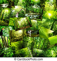 Postcard background - Stack of nature postcard All image...