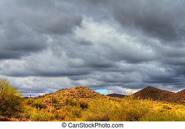 Winter Desert Storm - Desert storm over the southwestern...