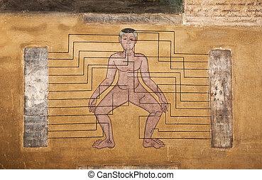 pinturas, templo, wat, Pho, enseñar, acupuntura,...