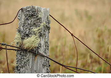 weathered fence post - weathered wooden fence post with...