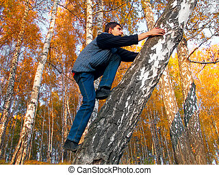 teen in autumn forest - The boy gets on a birch in an autumn...