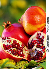 Pomegranates and leaves on table