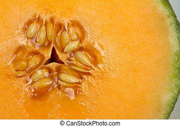 Cantaloupe fruit closeup
