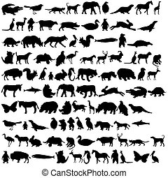 Animals icon 2 - Quality of various animal silhouettes