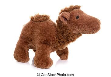 Camel soft toy on white background
