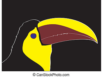 Keel bill toucan - a head of keel bill toucan