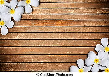 plumeria flower frame - White plumeria flower on Wood...