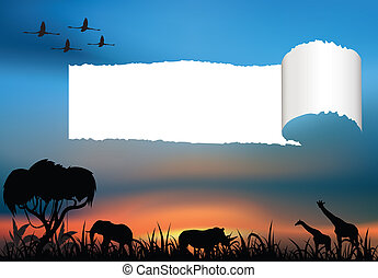 African wildlife at the sunset