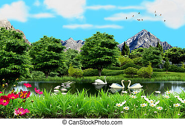 Lake in the countryside with white swans